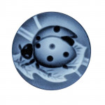 Black Agate 14mm Round Ladybug Cameo